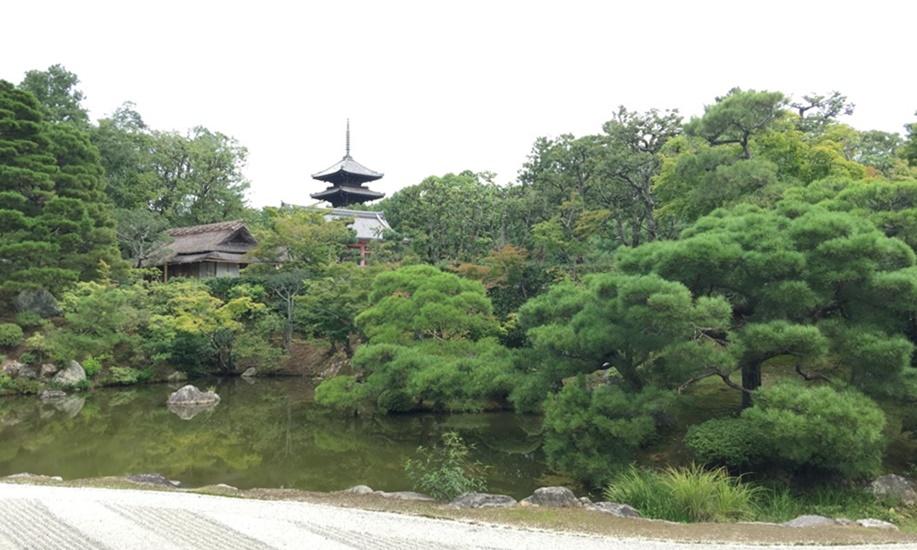 とあるお寺の池泉式庭園