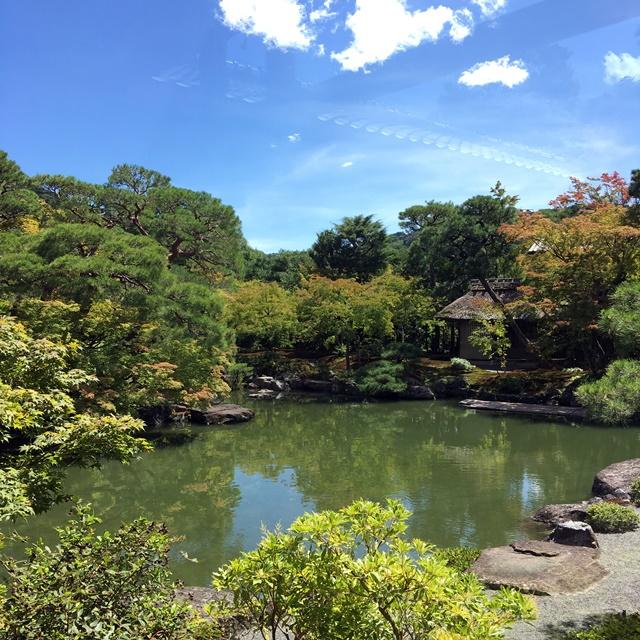 素晴らしい日本庭園!