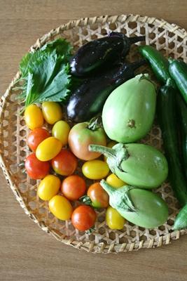 畑でとれた野菜