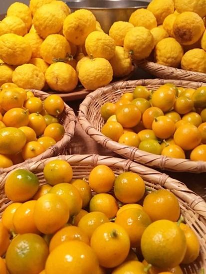 「柚子」と「金柑」